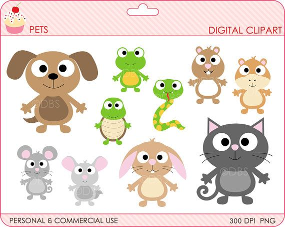 Animals digital clip art. Pets clipart pet snake