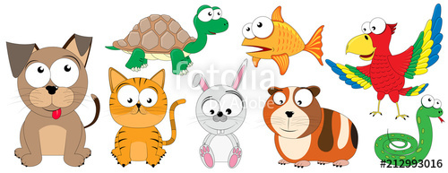 Domestic animals collection of. Pets clipart pet snake