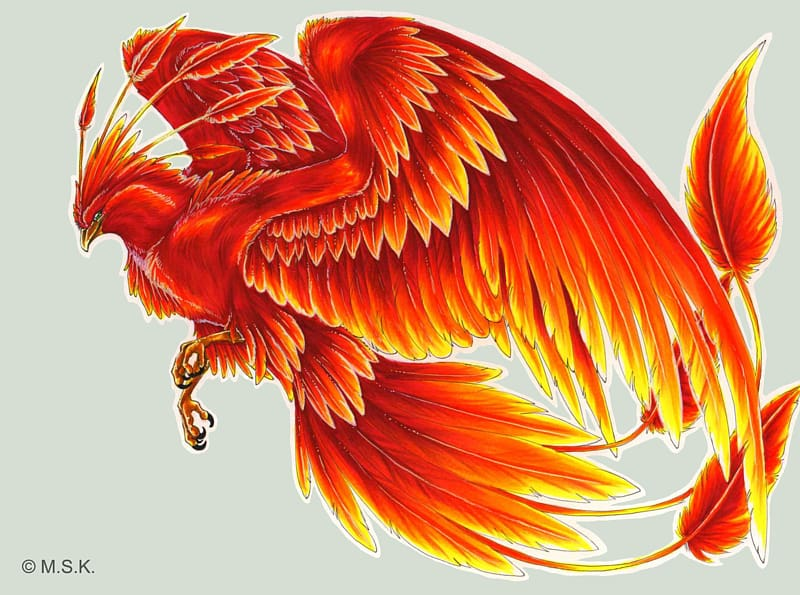Phoenix clipart fawkes. Harry potter bird tattoo