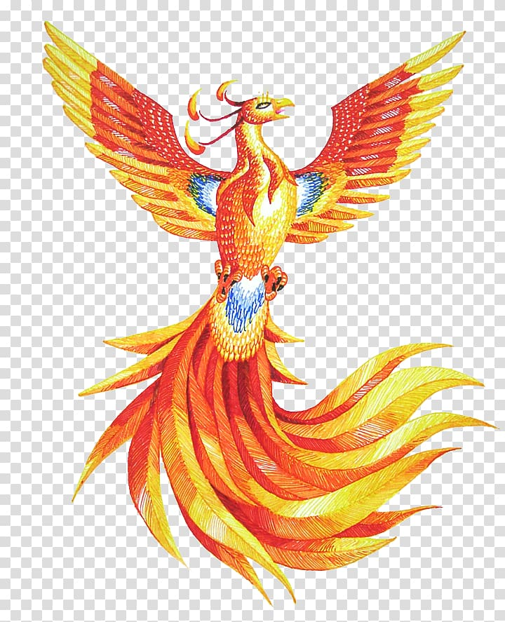 Yellow and red drawing. Phoenix clipart fawkes