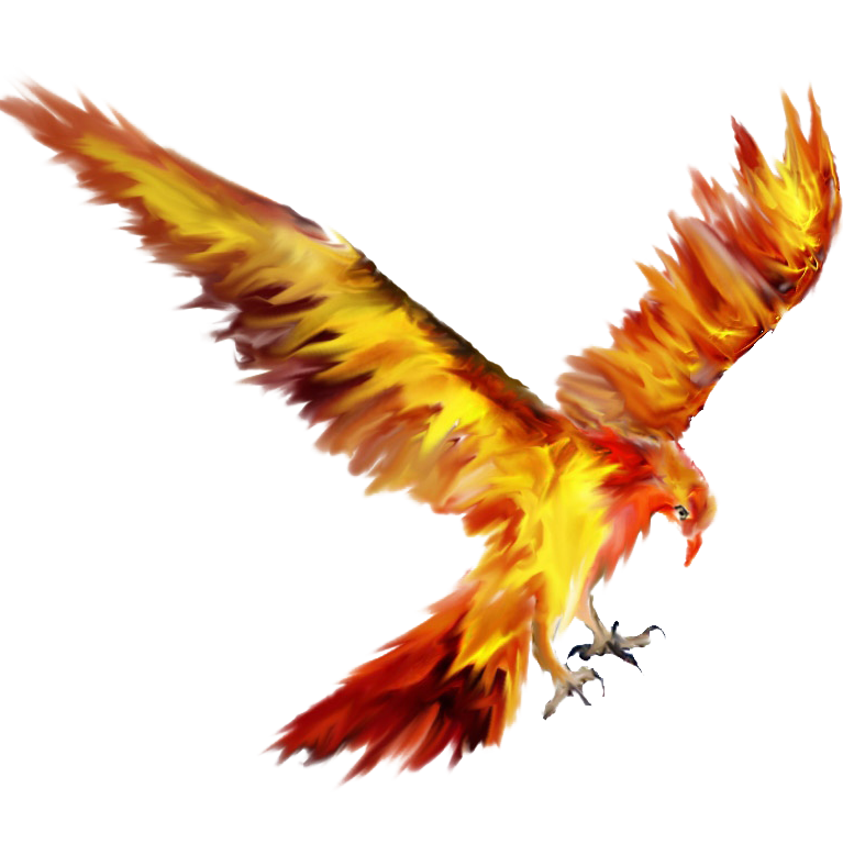 Phoenix clipart fawkes. Lights logo information png