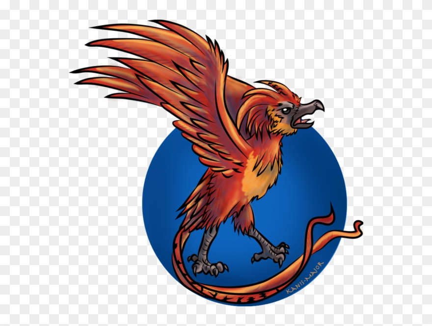 Transparent png harry potter. Phoenix clipart fawkes