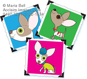 Photograph clipart. Chihuahua photographs image pictures