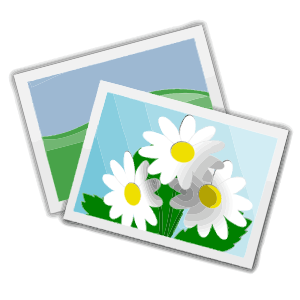 Photography clip art free. Photograph clipart
