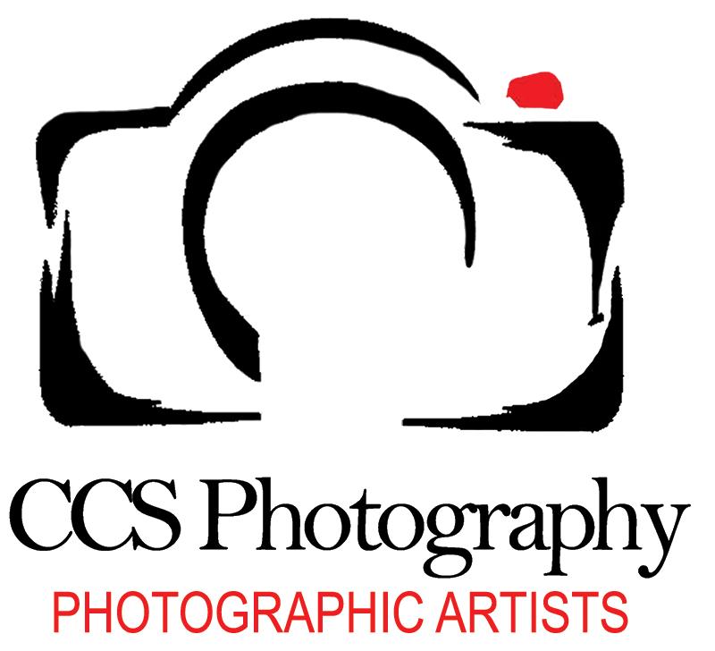 Wedding photographer st petersburg. Photograph clipart photography logo