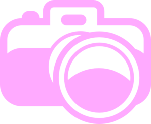 For photography logo clip. Photographer clipart pink camera