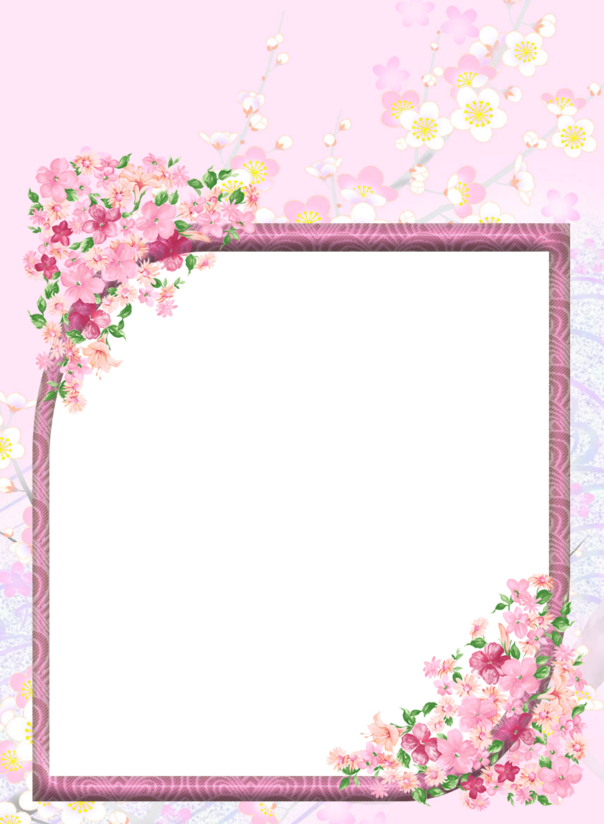 Pink transparent flowers png. Photography clipart border