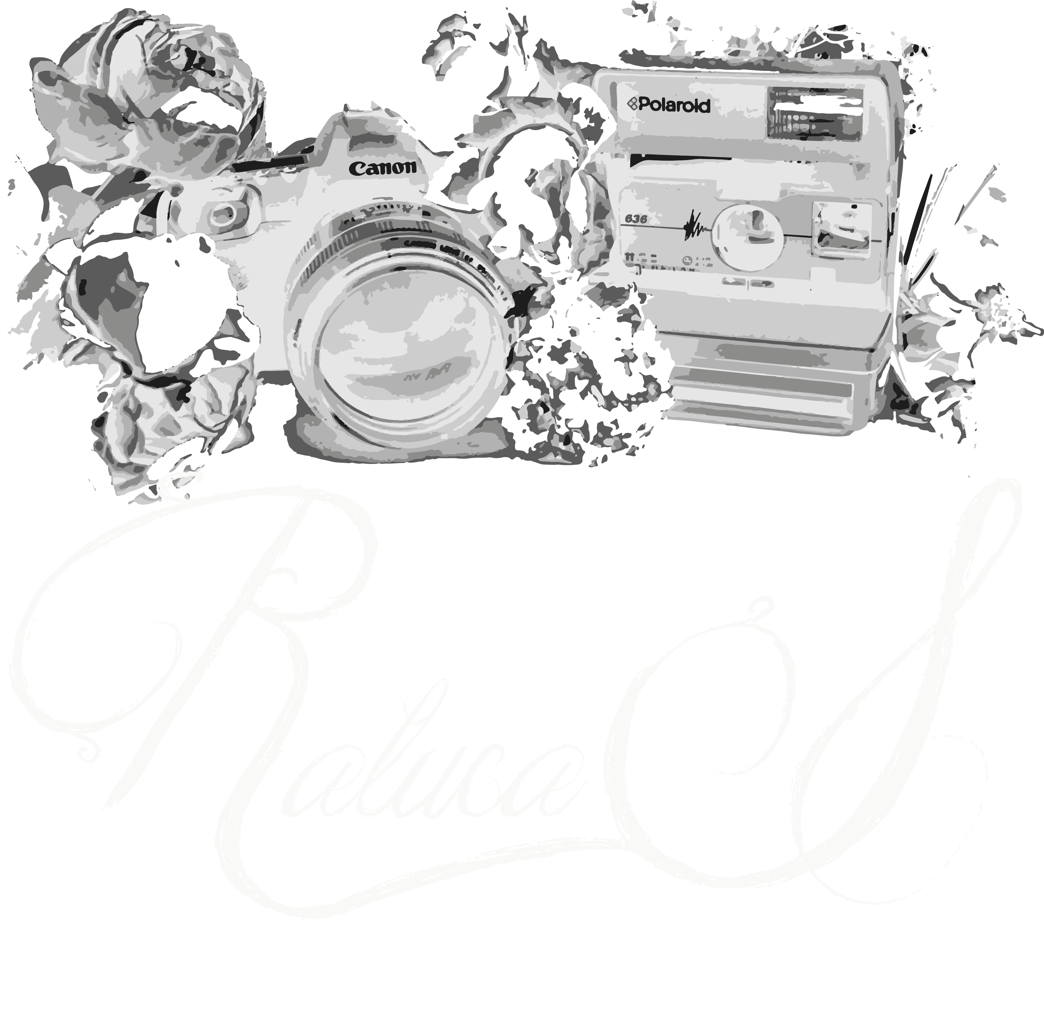 And beauty photographer based. Photography clipart fashion photography
