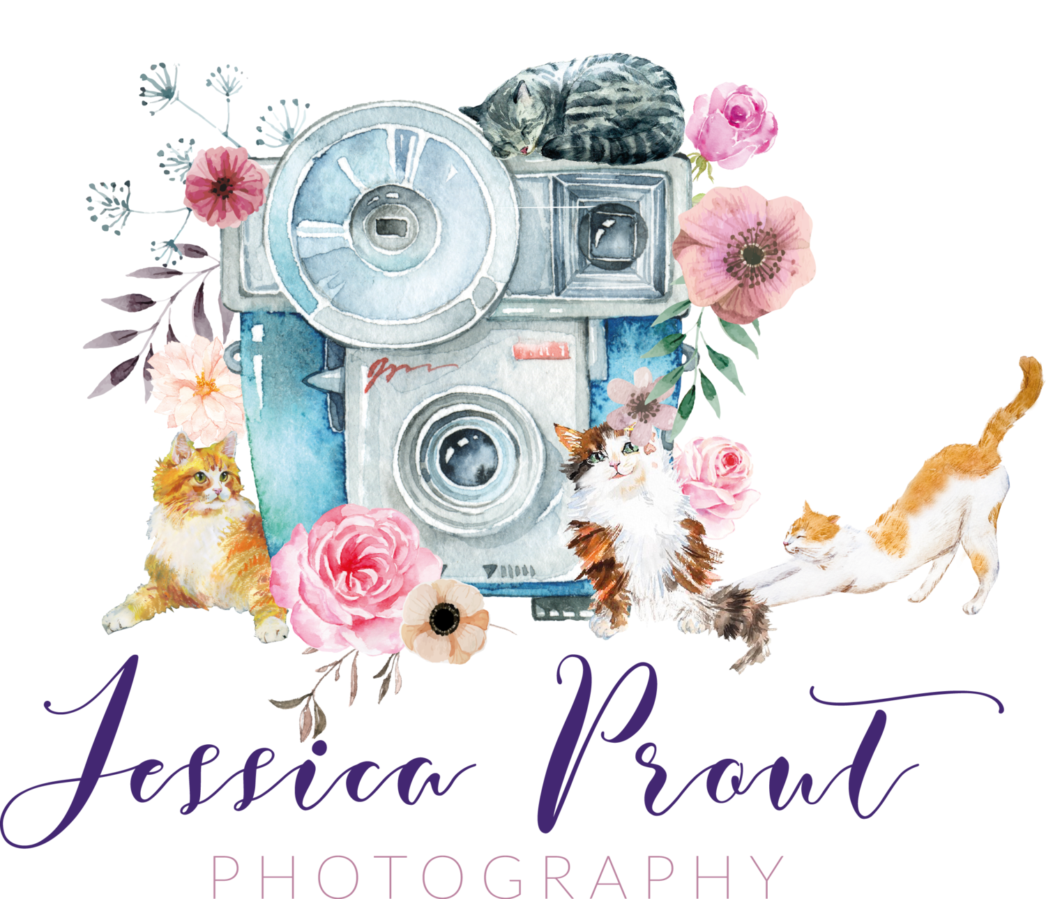 Photography clipart yearbook. About new england photographer