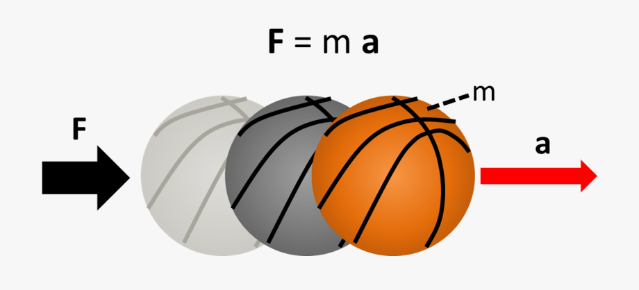 Free download net and. Physics clipart physics force