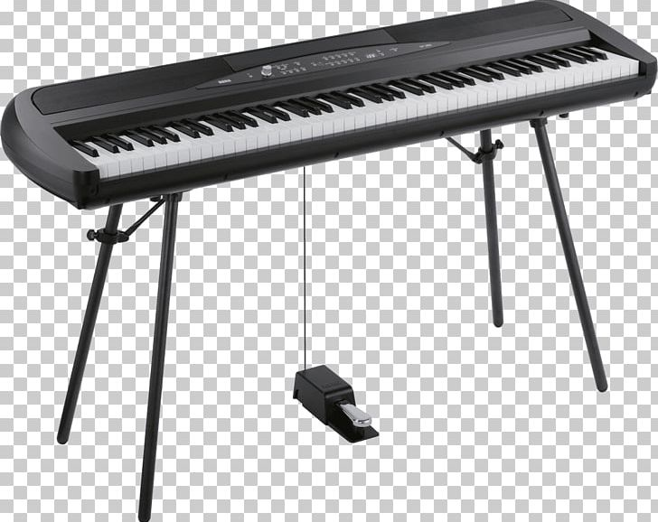 Piano clipart electric. Digital stage keyboard korg
