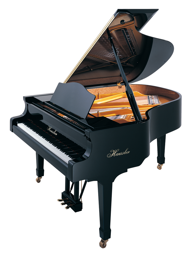 Bluthner central music haessler. Piano clipart piano concert