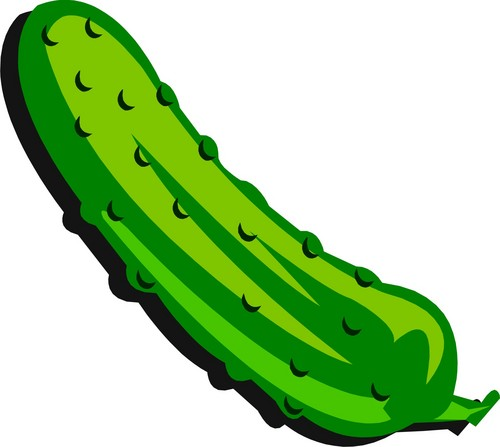 Free pickles cliparts download. Pickle clipart