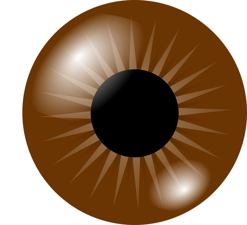 Picture clipart eye. Brown eyes pretty free