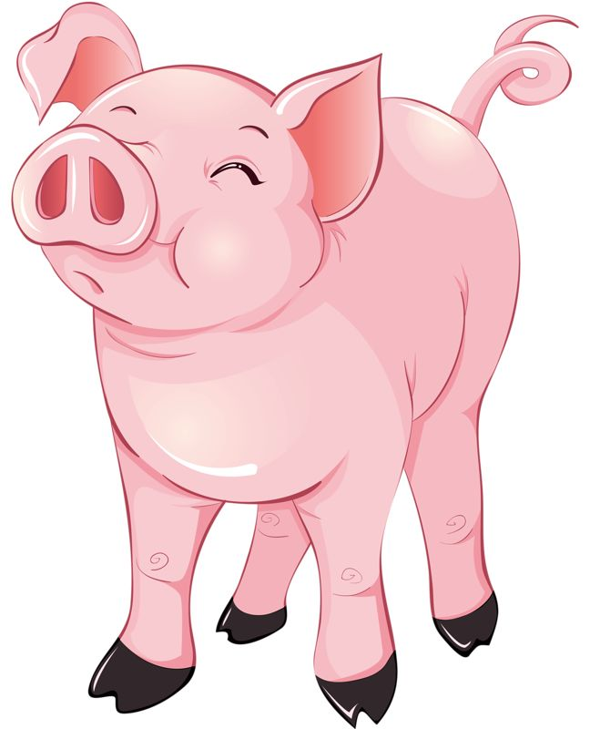 Pig clipart.  best of clip