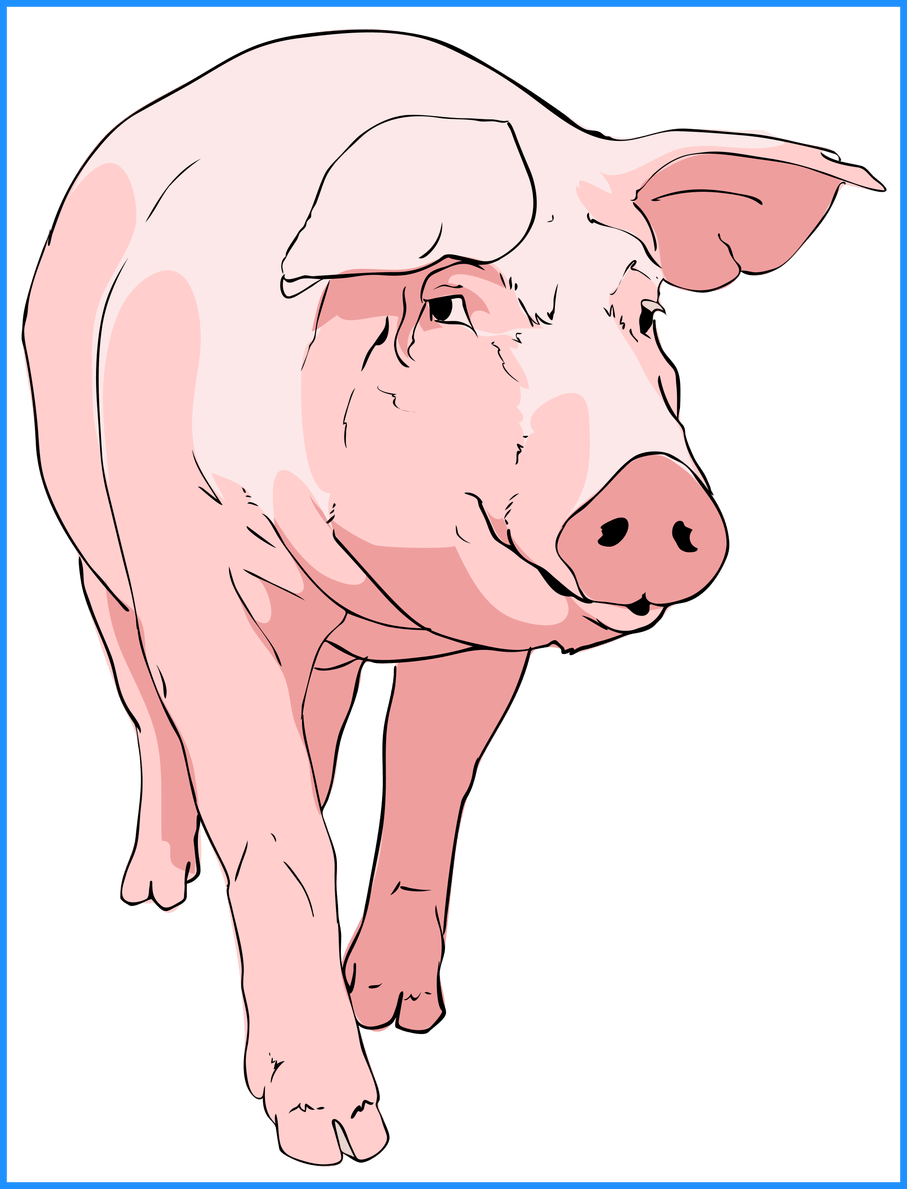 Shocking classy ideas black. Pig clipart animated