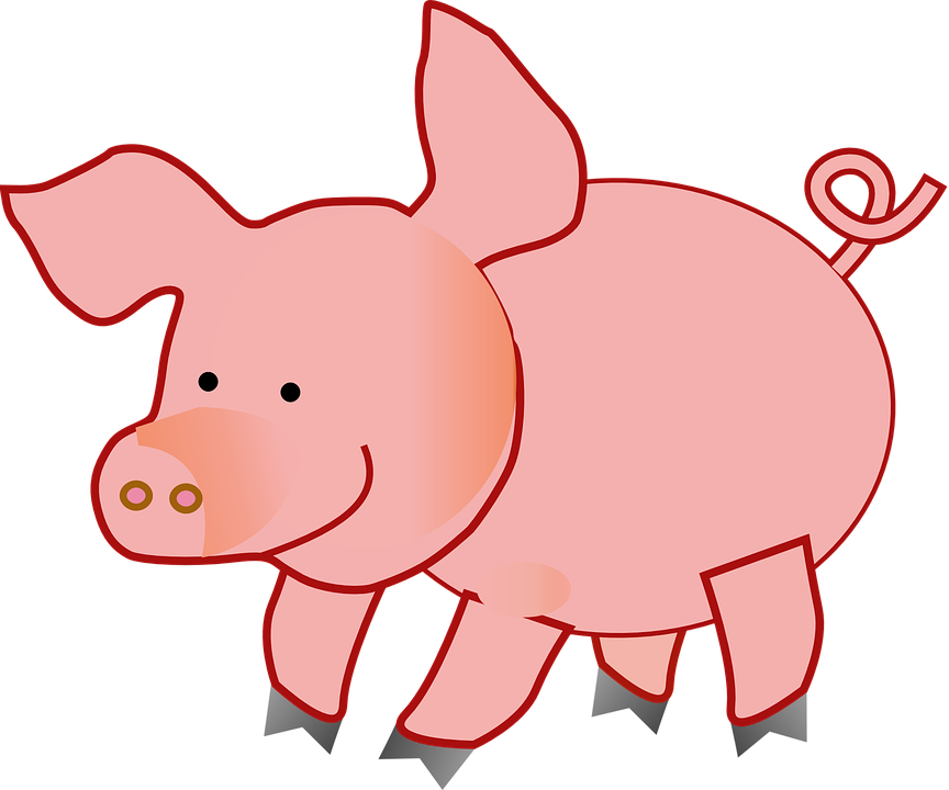 Free photo lively funny. Pig clipart summer