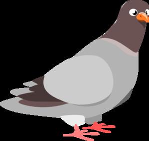 Clip art at clker. Pigeon clipart