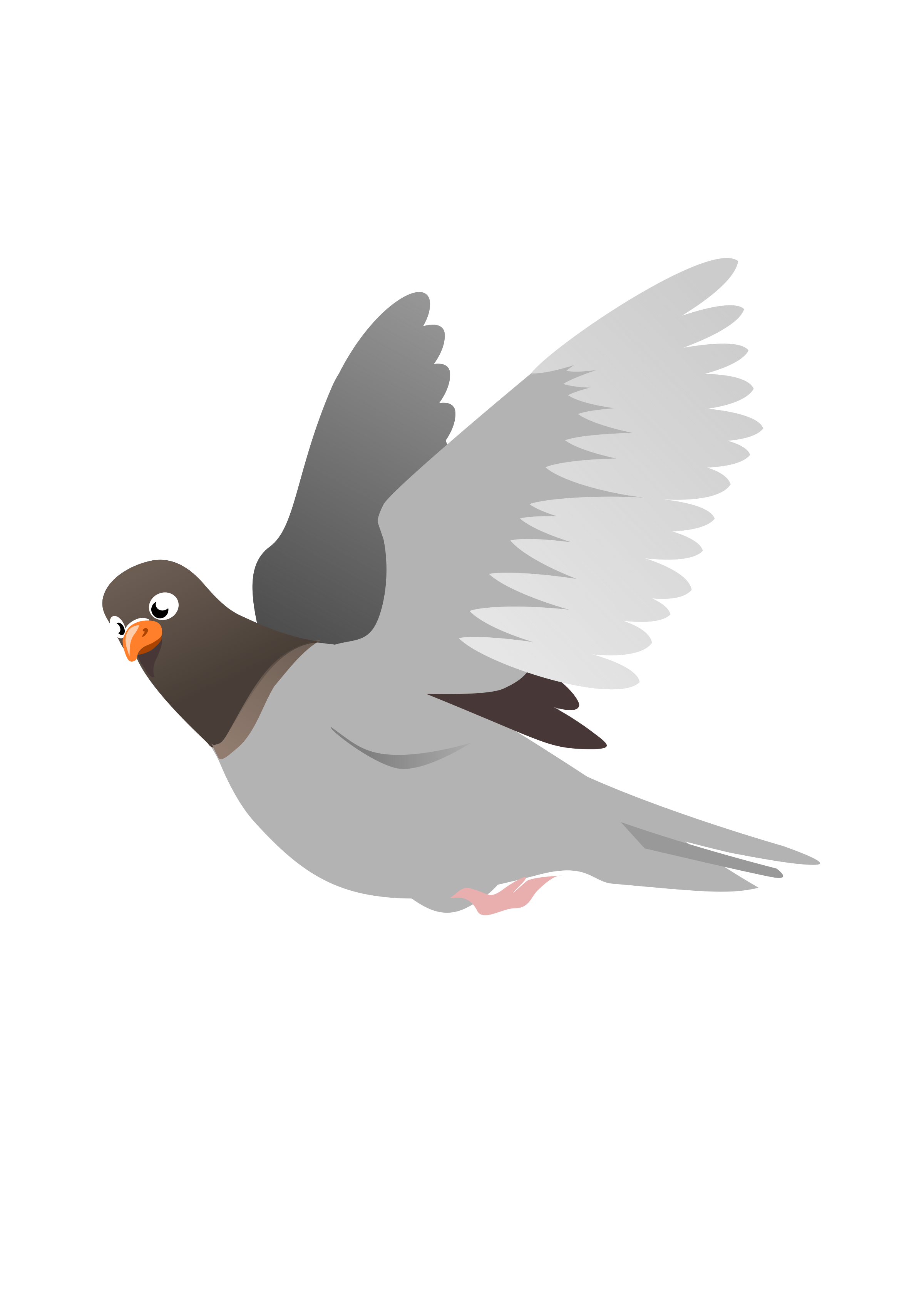 A flying big image. Pigeon clipart
