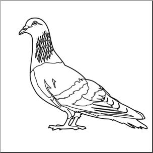 Pigeon clipart. Clip art b w