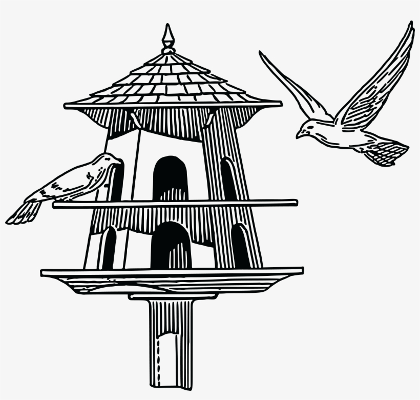 Free of a black. Pigeon clipart pigeon house