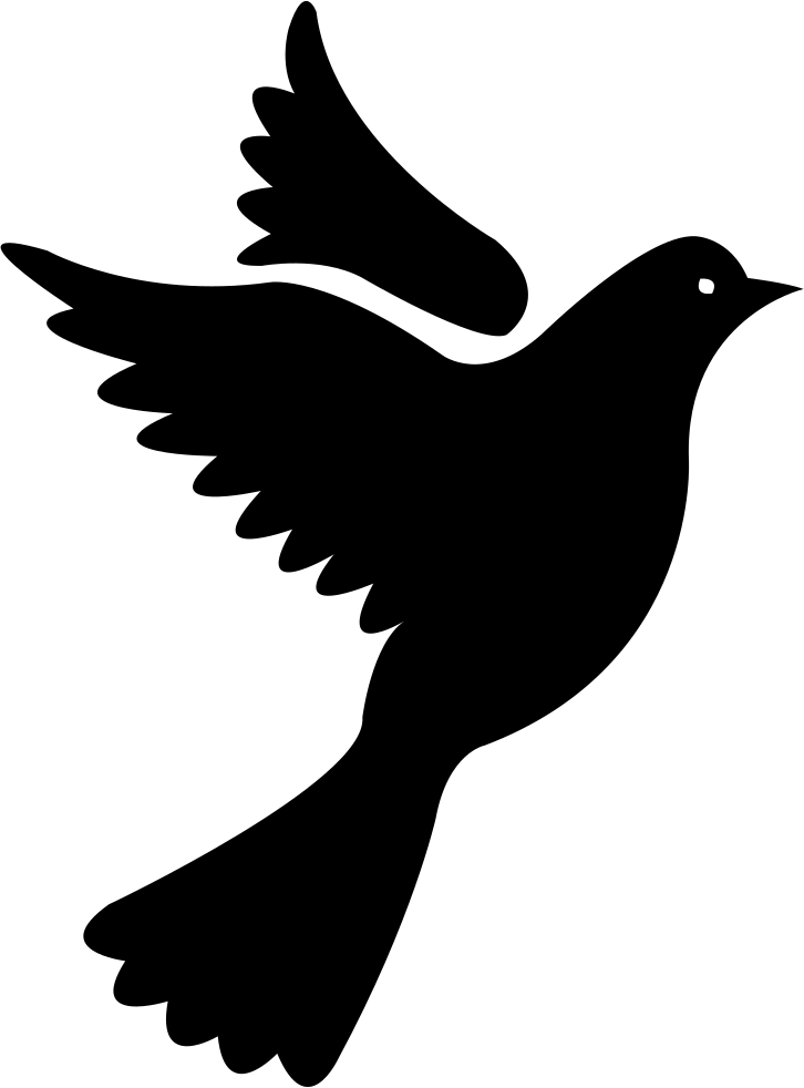 Will the svg png. Wing clipart pigeon wing