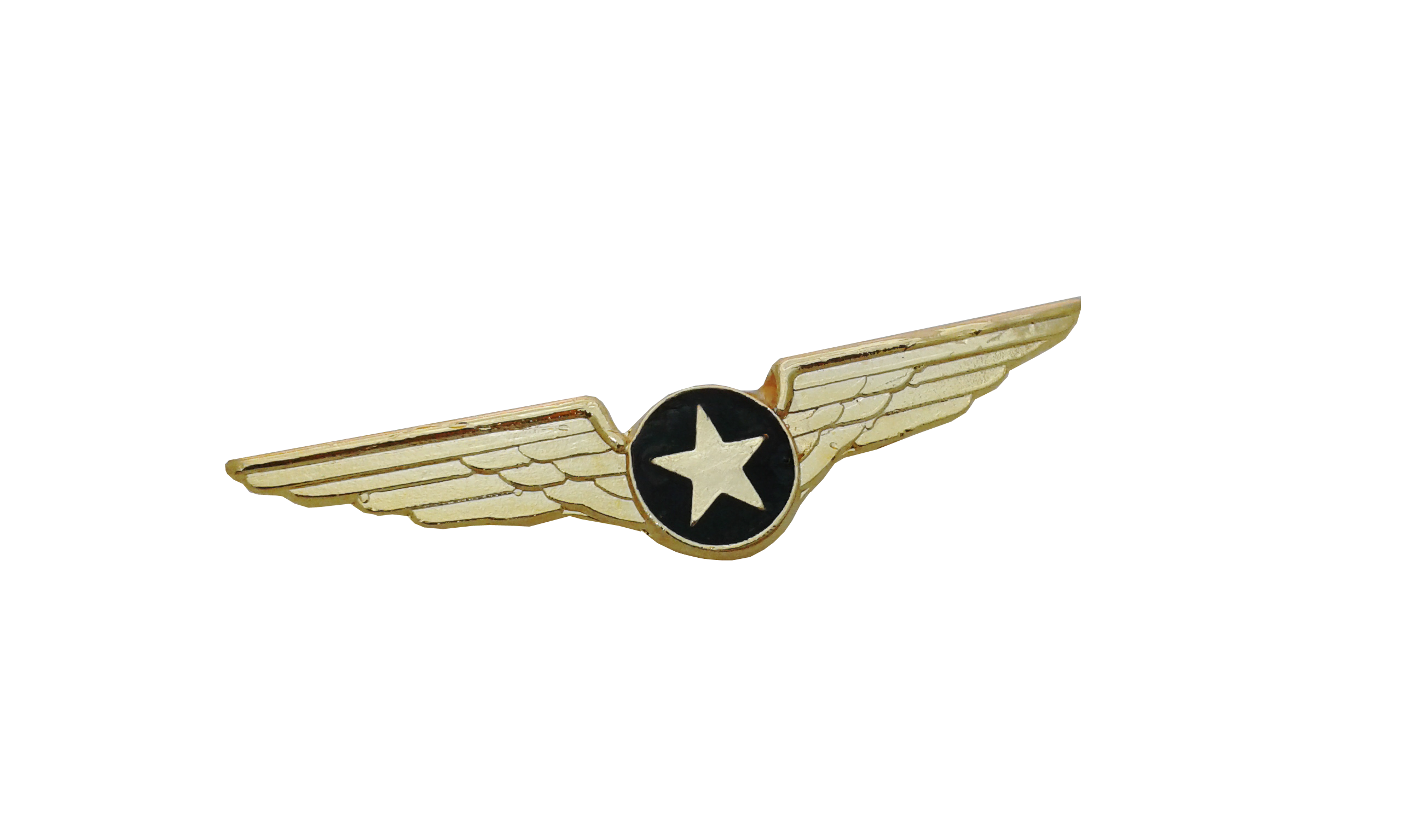 Airline wings logo muck. Steampunk clipart pilot badge