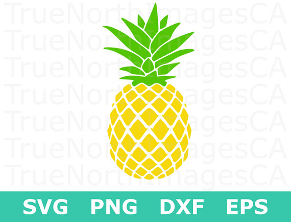 Svg silhouette vector file. Pineapple clipart