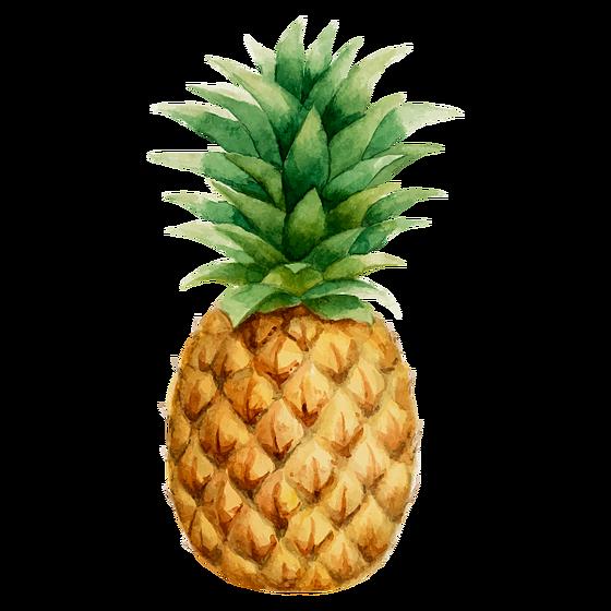 Pineapple clipart boho. Prendadaeavo ideias pinterest flamingo