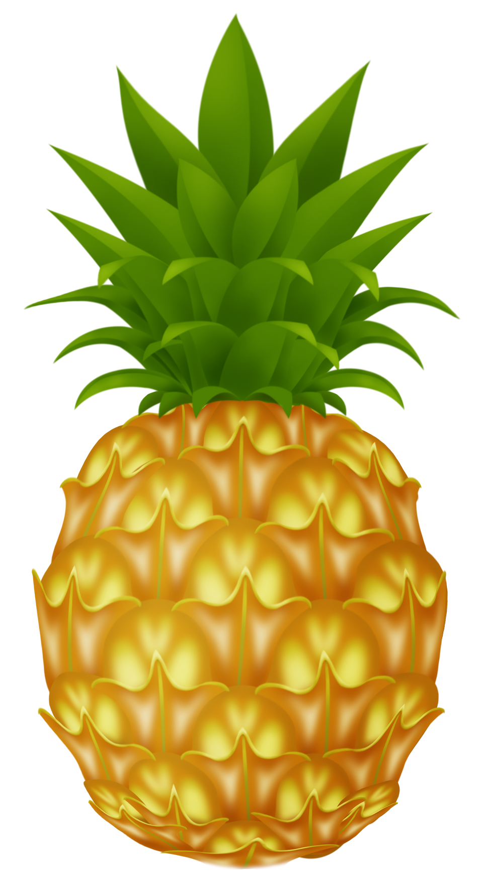 Pineapple clipart high quality. Png image purepng free