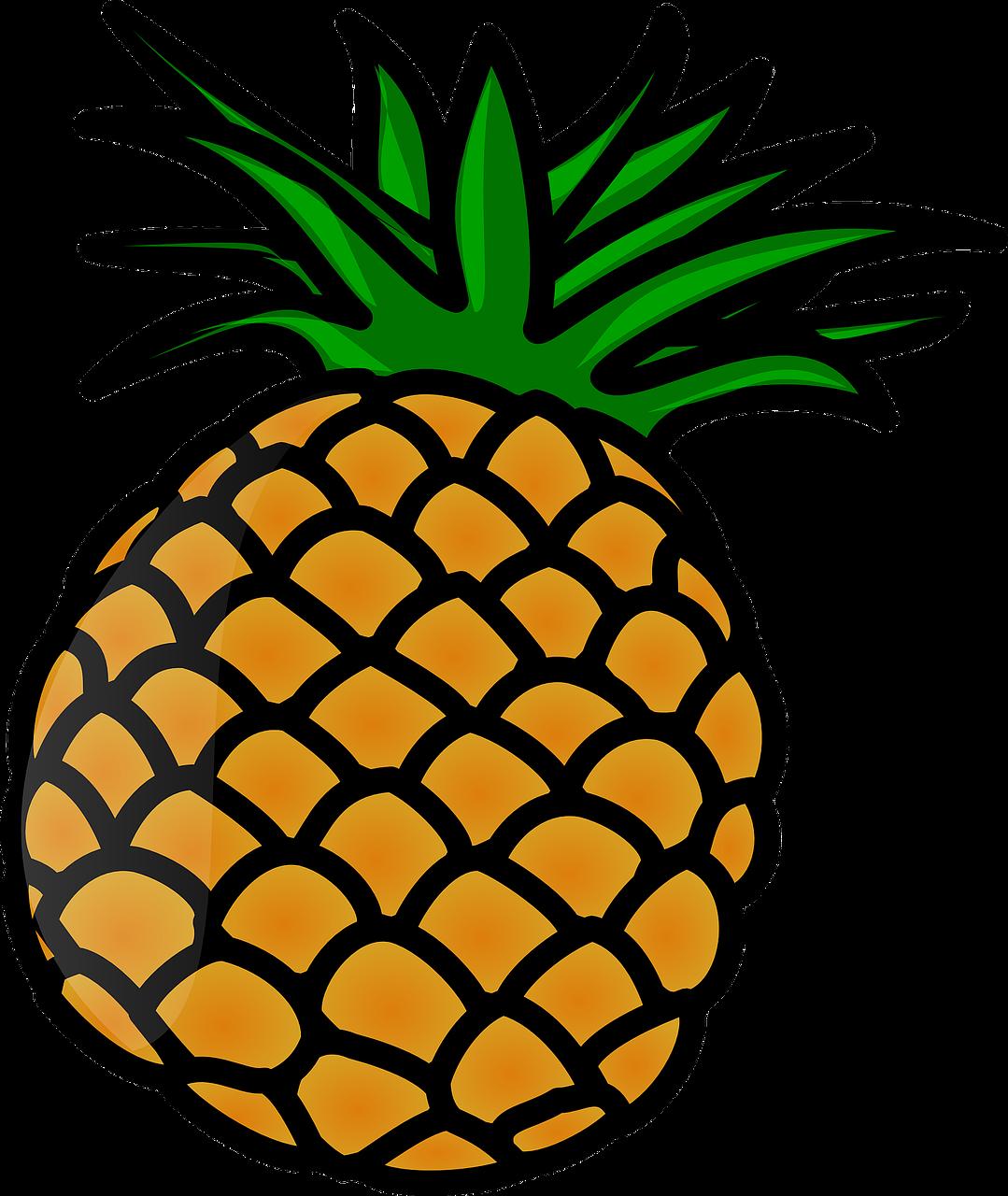 Pineapple clipart juicy. Fruit tropical fresh ripe