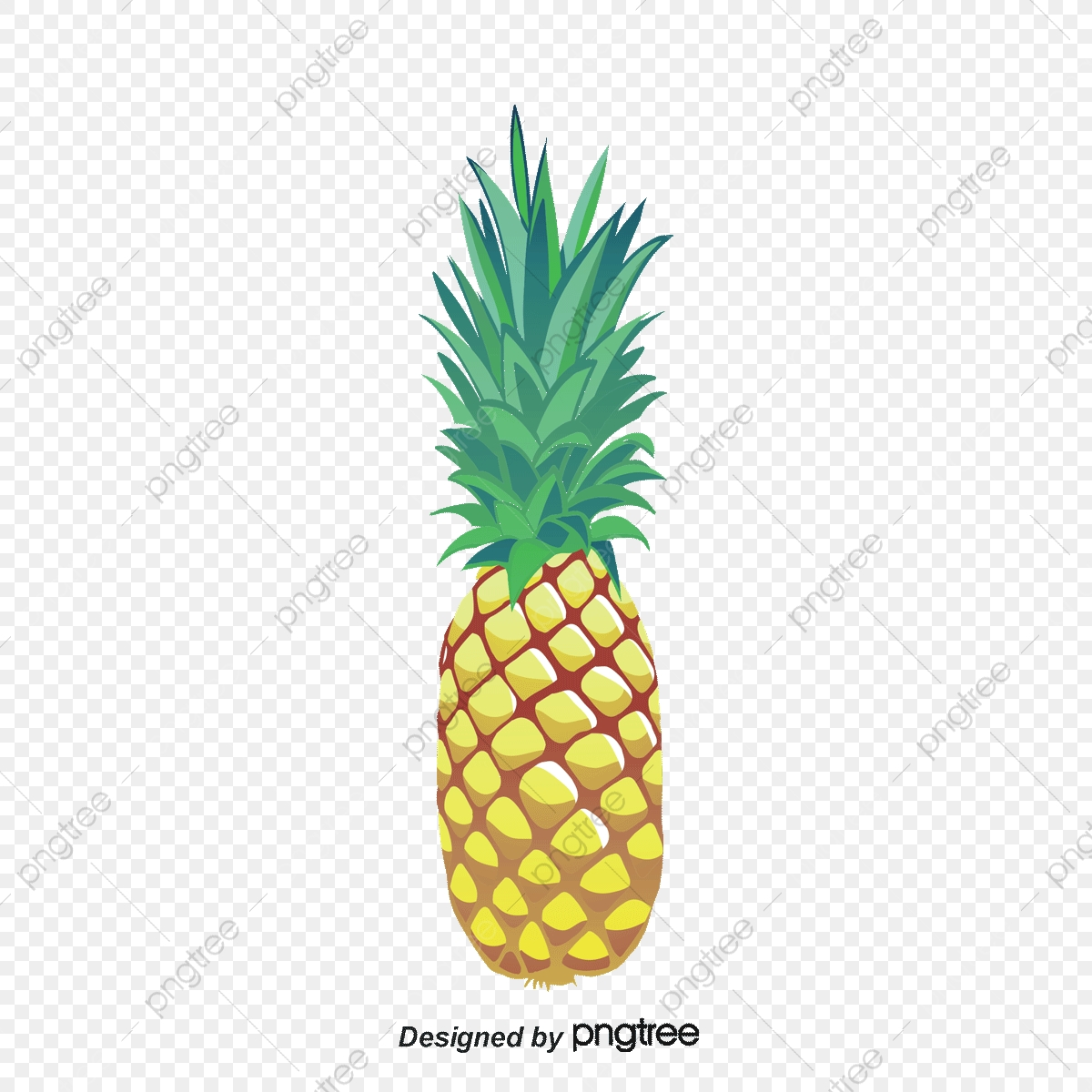 Pineapple clipart oil paint. Fine painting elemental background
