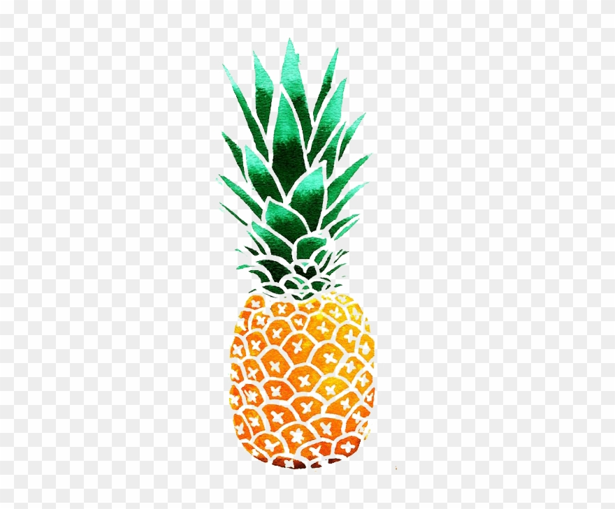 Pineapple clipart oil paint. Kisspng drawing watercolor painting