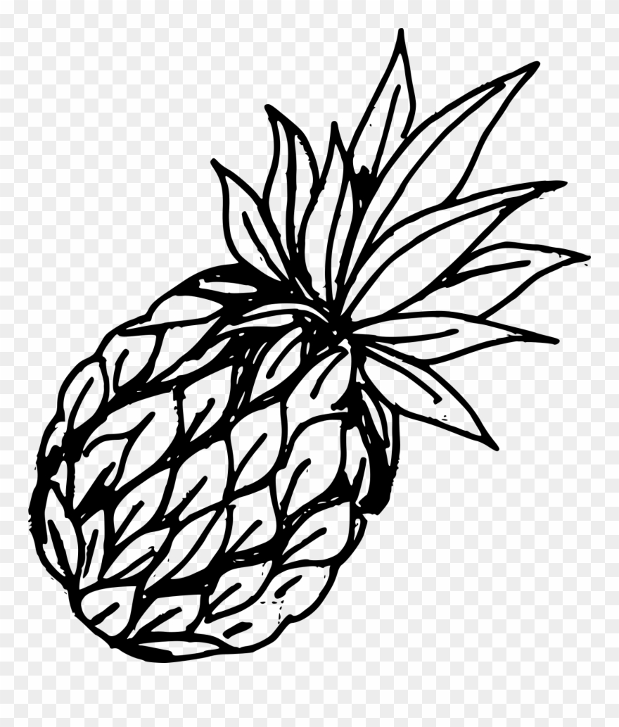 Pineapple clipart vintage. Free download png drawing