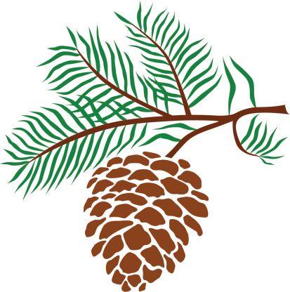 Pine cone clip art. Pinecone clipart