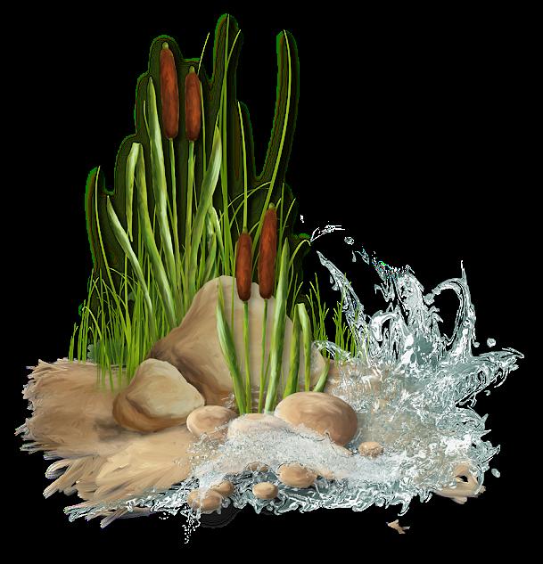 pinecone clipart greenery