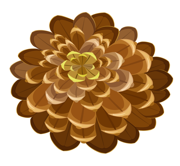 Gallery free pictures . Pinecone clipart pine sprig