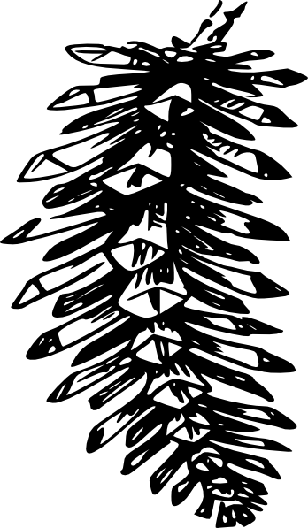 Pinecone clipart vector. Free download clip art