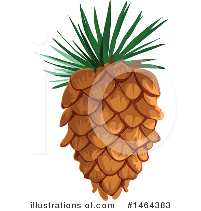 Illustration by tradition sm. Pinecone clipart vector