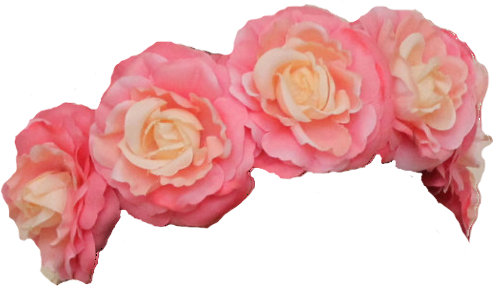 Pink flower crown png. Wow references image