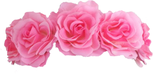 Pink flower crown png.  transparent for free