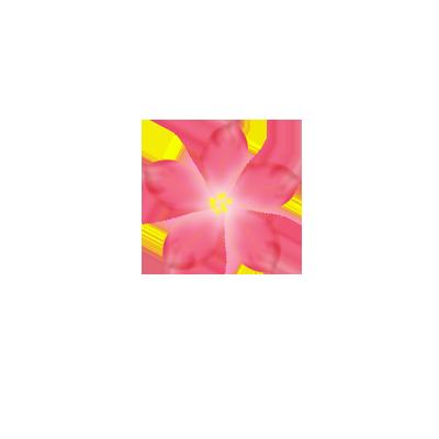 Pink flower png. By sashasonesica on deviantart