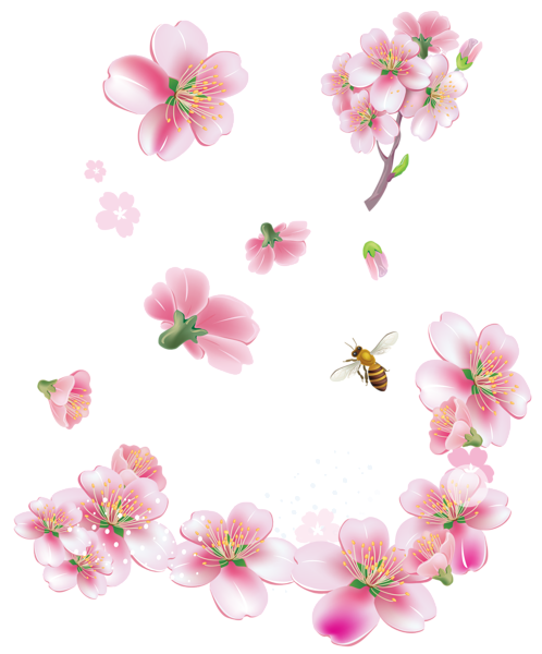 Spring trees flowers clipart. Pink flower png