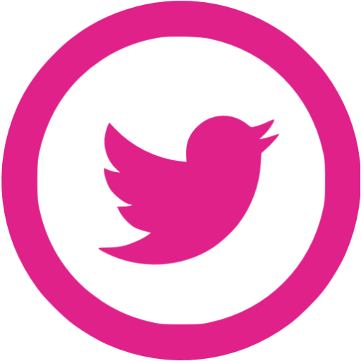 Pink twitter png. Barbie icon free social
