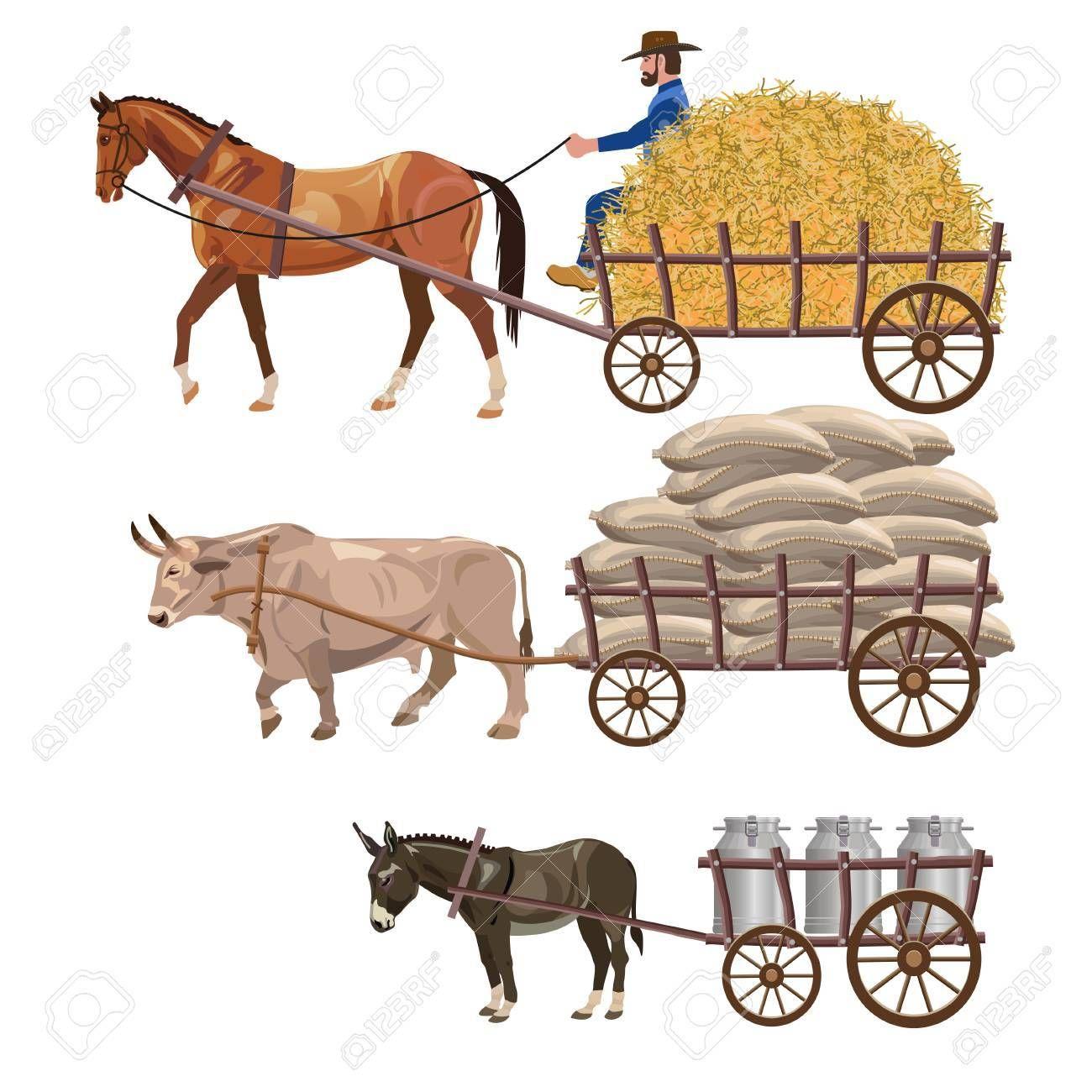Stock vector primary in. Pioneer clipart bullock cart