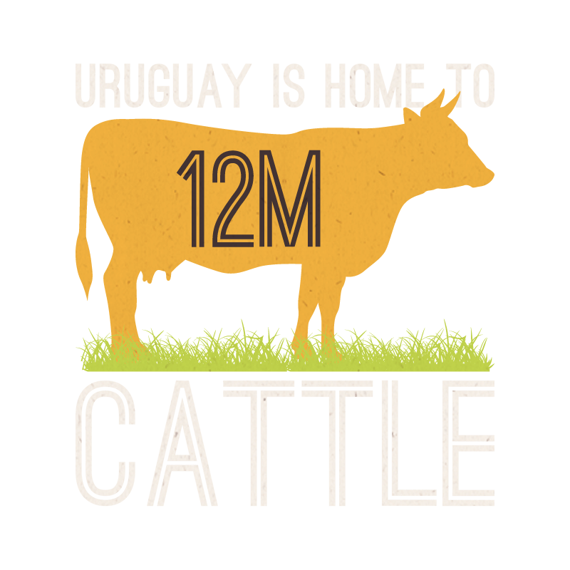 Pioneer clipart cow. Why uruguay patagonic grass