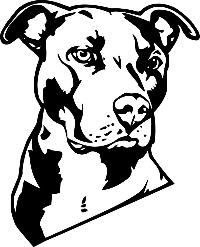Best of gallery digital. Pitbull clipart