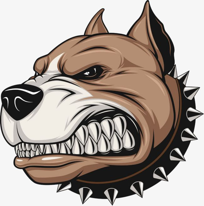 Pitbull clipart angry. Pin on gangsta