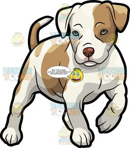 Pitbull Clipart Cartoon Pitbull Cartoon Transparent Free