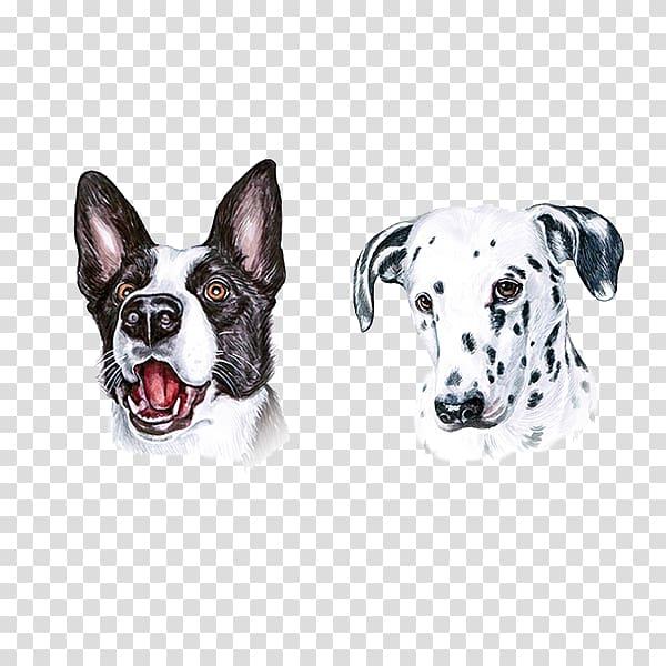Pitbull clipart spotted dog. Painter illustrator painting illustration